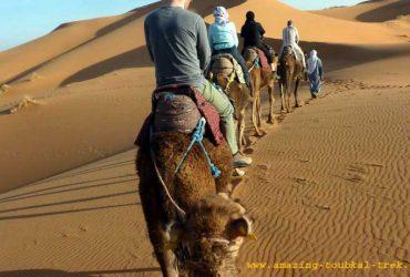 sahara desert trip - marrakech excursions