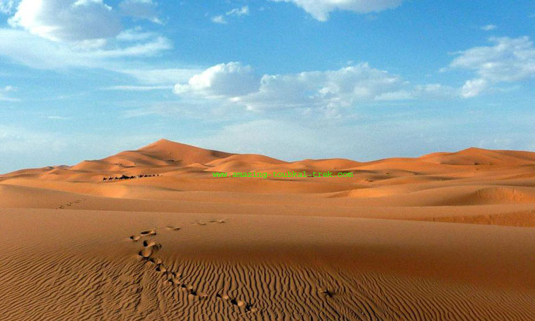 3 day marrakech fes desert tour