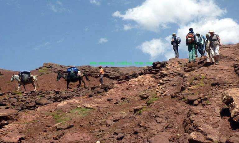 berber villages family trek 6 day