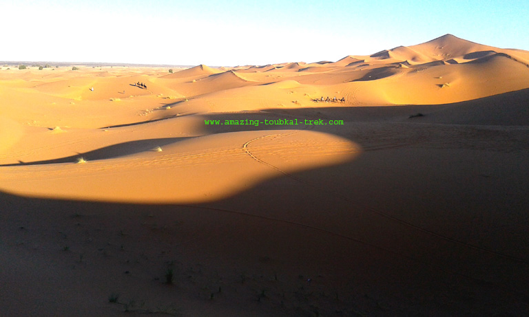 fes desert tour 4 days