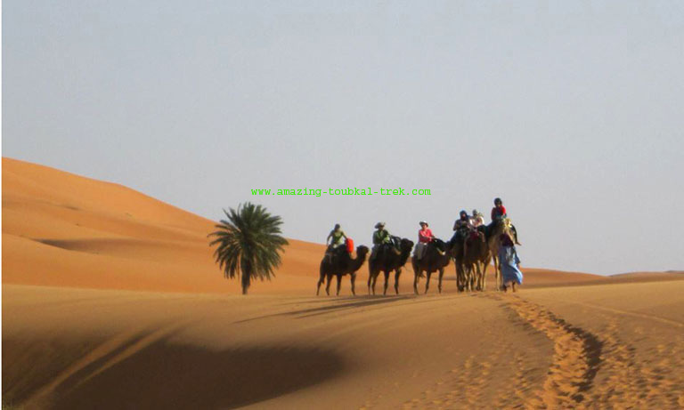 marrakech fes desert tour 3 days