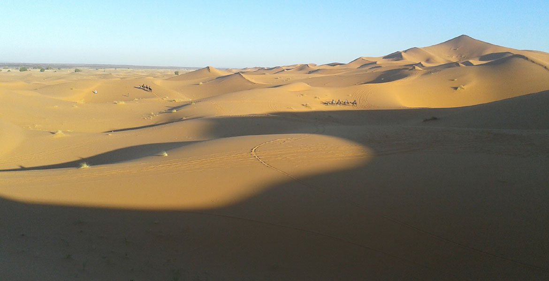camel trekking tours