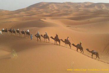 trekking in morocco - toubkal desert combined tour
