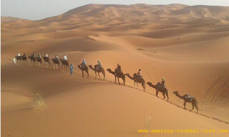 mount toubkal desert combined tour