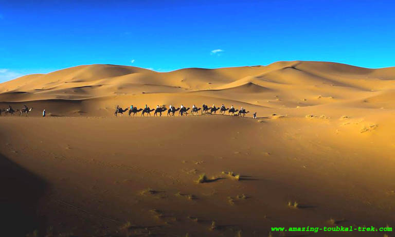 private morocco tour from marrakech 10 days 9 nights