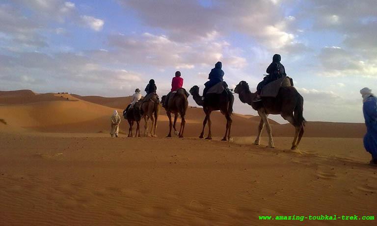 8 day casablanca desert trip