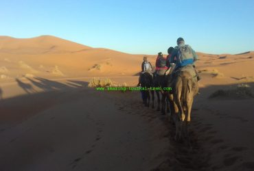 atlas mountain sahara tour
